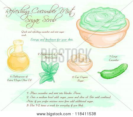 vector hand drawn illustration of mint cucumber refreshing sugar scrub recipe