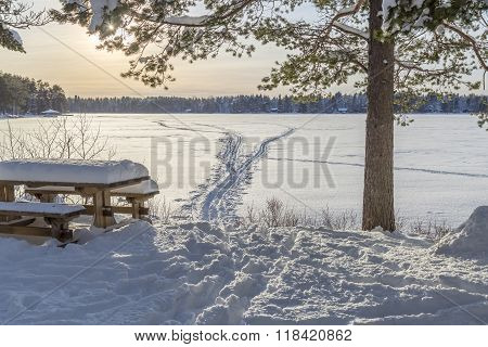 Bench In Front Of Frozen Lake With Ski Tracks