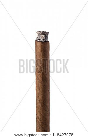 cigar isolated on a white background