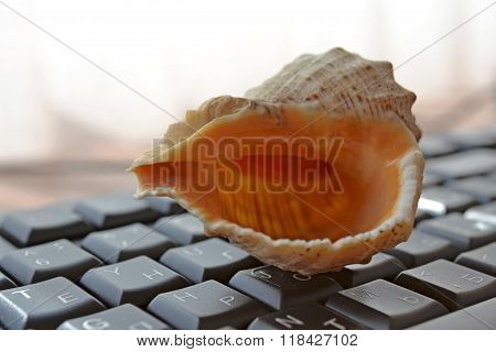 Keyboard With Shell