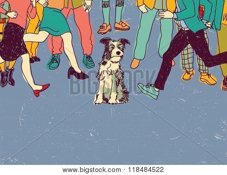 Homeless poor dog on street crowd people