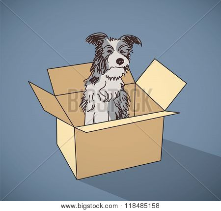 Sad homeless street dog alone in box color