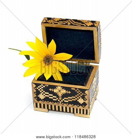 Open Casket And In It A Yellow Flower