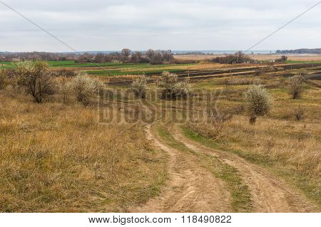 Autumnal landscape near Mishurin Rog village in central Ukraine