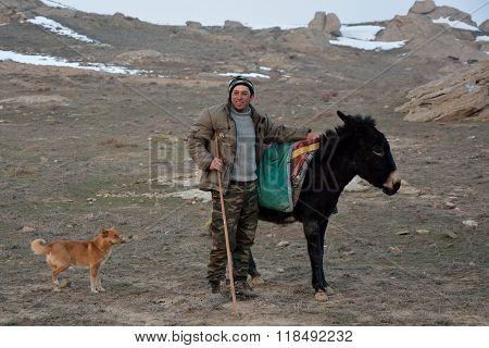 Azerbaijani shepherd next to donkey with dog