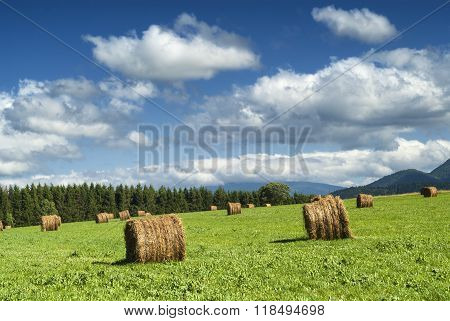 Country Landscape In Midi-pyrenees (france)