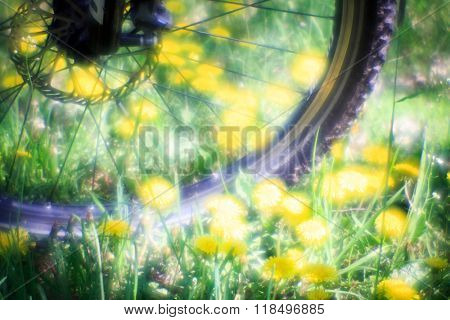 bike wheel on meadow background - very soft photo