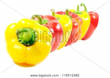 Paprika peppers on white