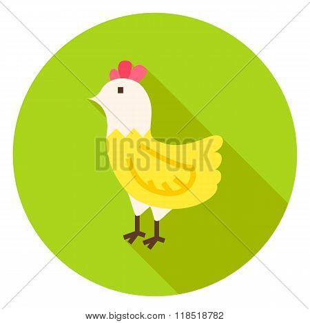 Hen Circle Icon With Long Shadow