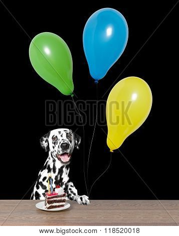 Dog Celebrating A Birthday With A Piece Of Cake And Balloons