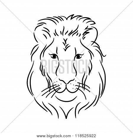 Head Of The Lion