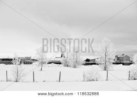 Industrial lumber yard