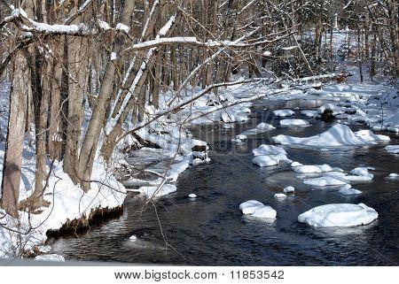 Wintery Stream
