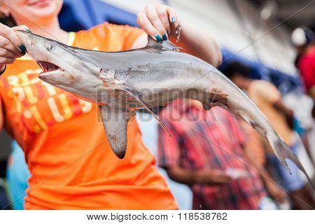 BERUWALA, SRI LANKA - NOVEMBER 16, 2015 : Russian tourists posing for a photo with a dead shark.People buying fresh raw fish on market