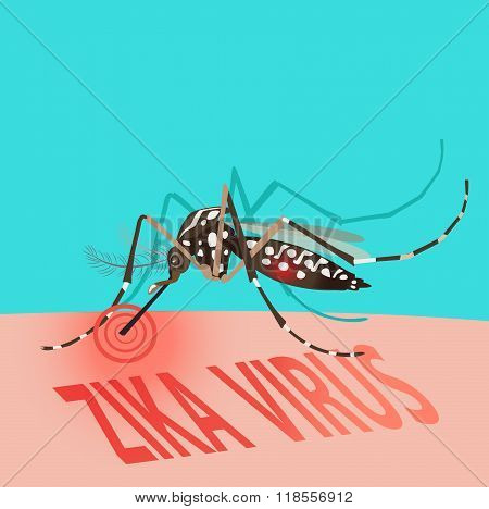 Zika Virus Outbreak Alert Concept. Mosquito Sucking Blood On Skin. Editable Clip Art.Vector. Illness. Disease. Pest. Pregnant. Microcephaly. Pathology. Victim. Against Virus From A. Aegypti Mosquito.