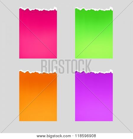 Color paper ragged sheet pink green violet orange isolated illustration vector