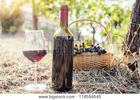 Red Wine Bottle And Wine Glass On In Rural Areas
