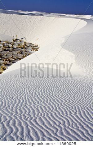 Morning In White Dunes National Monument