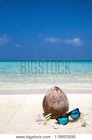 Coconut, flowers and corals on the beach