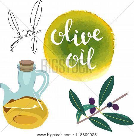 Set Of Vector Drawn Olive Oil Design Elements