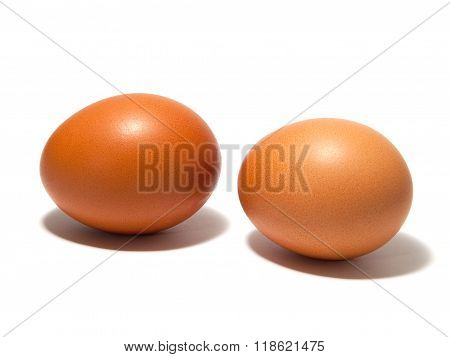Brown Eggs On The White Background