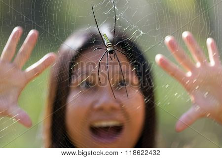 Woman surprised and scared to see a tropical golden orb spider, Thailand
