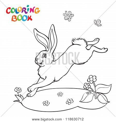Coloring Book With Bunny, Flower And Butterfly.