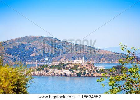 Alcatraz island though foliage in San Francisco