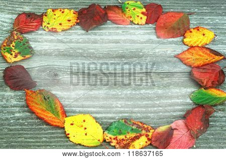 Board with autumn colorful leaves concept panel