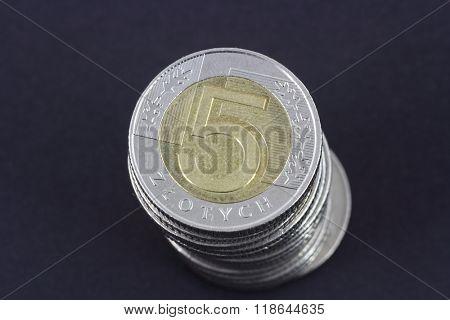 old polish 5 zloty coin