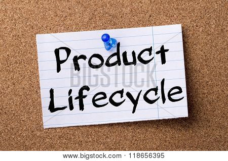 Product Lifecycle - Teared Note Paper Pinned On Bulletin Board