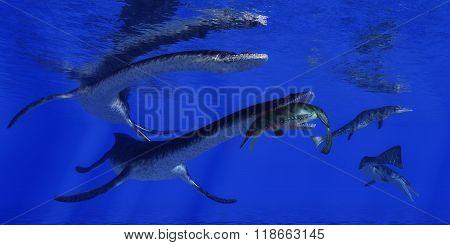 Plesiosaurus Attacks Metriorhynchus