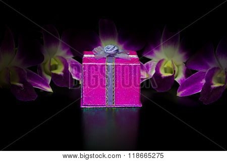 Pink Gift Box On Blur Beauty Purple Dendrobium Orchid In Black Background