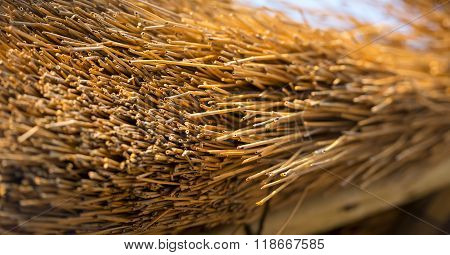 Thatched Roof Detail