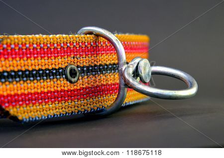 picture of a brand new colrful dog collar