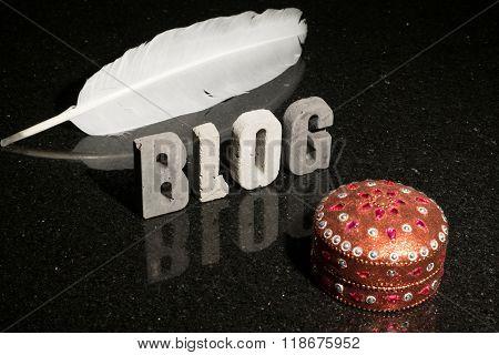 Fashion Or Design Blog Caption Or Title