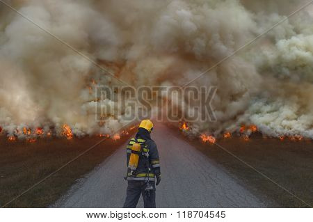 Firefighter Trying To Prevent The Spread Of Natural Disaster