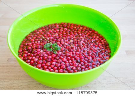 Vibrant texture background with fresh organic cranberry and green leaf in the water