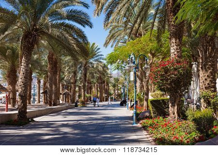 Eilat Israel - February 11 2016: The central promenade ath the beach in Eilat - a recreation city in Israel