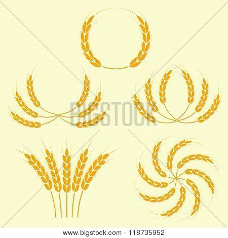 Wheat ears or rice icons set. Agricultural symbols. Vector illustration.