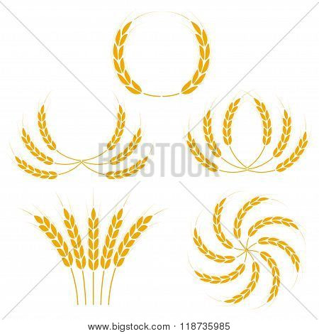 Wheat ears or rice icons set. Agricultural symbols isolated on white background. Design elements for