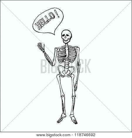 Fun smiling affably waving skeleton.