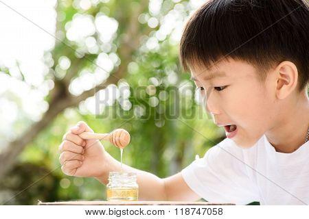 Boy Look At Honey Comb