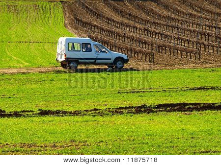 White Car on Green Field
