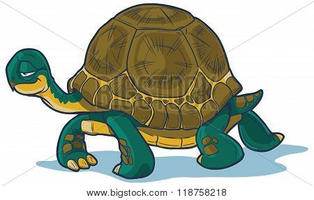 Vector Cartoon Tortoise Walking