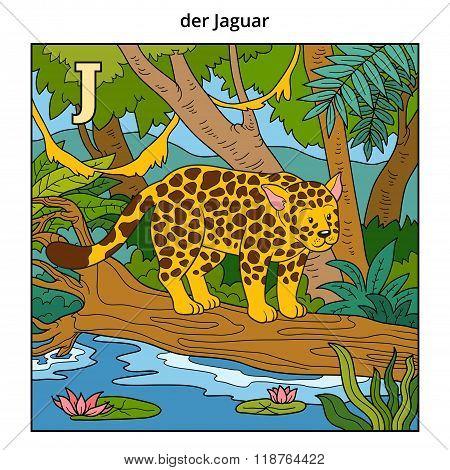 German Alphabet, Letter J (jaguar And Background)