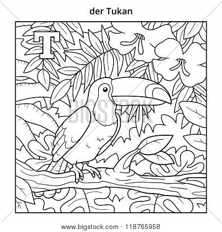 German Alphabet, Letter T (toucan And Background)