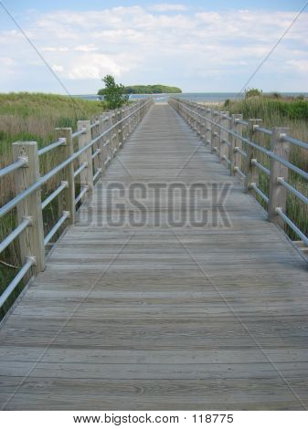 Path To The Sea 3