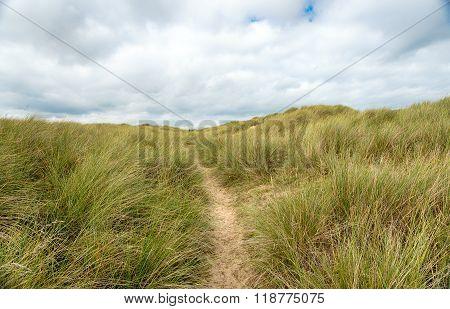 Dunes At Winterton On Sea