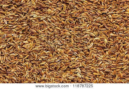 Superior quality dill seeds spreaded background